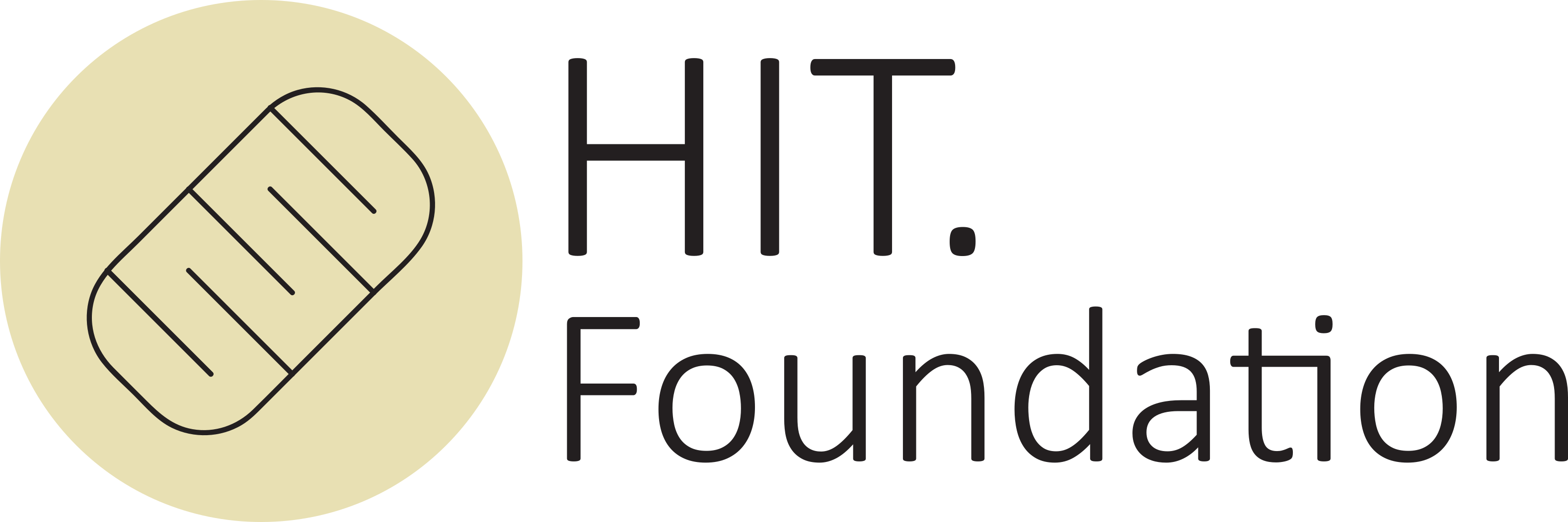 HIT. Foundation